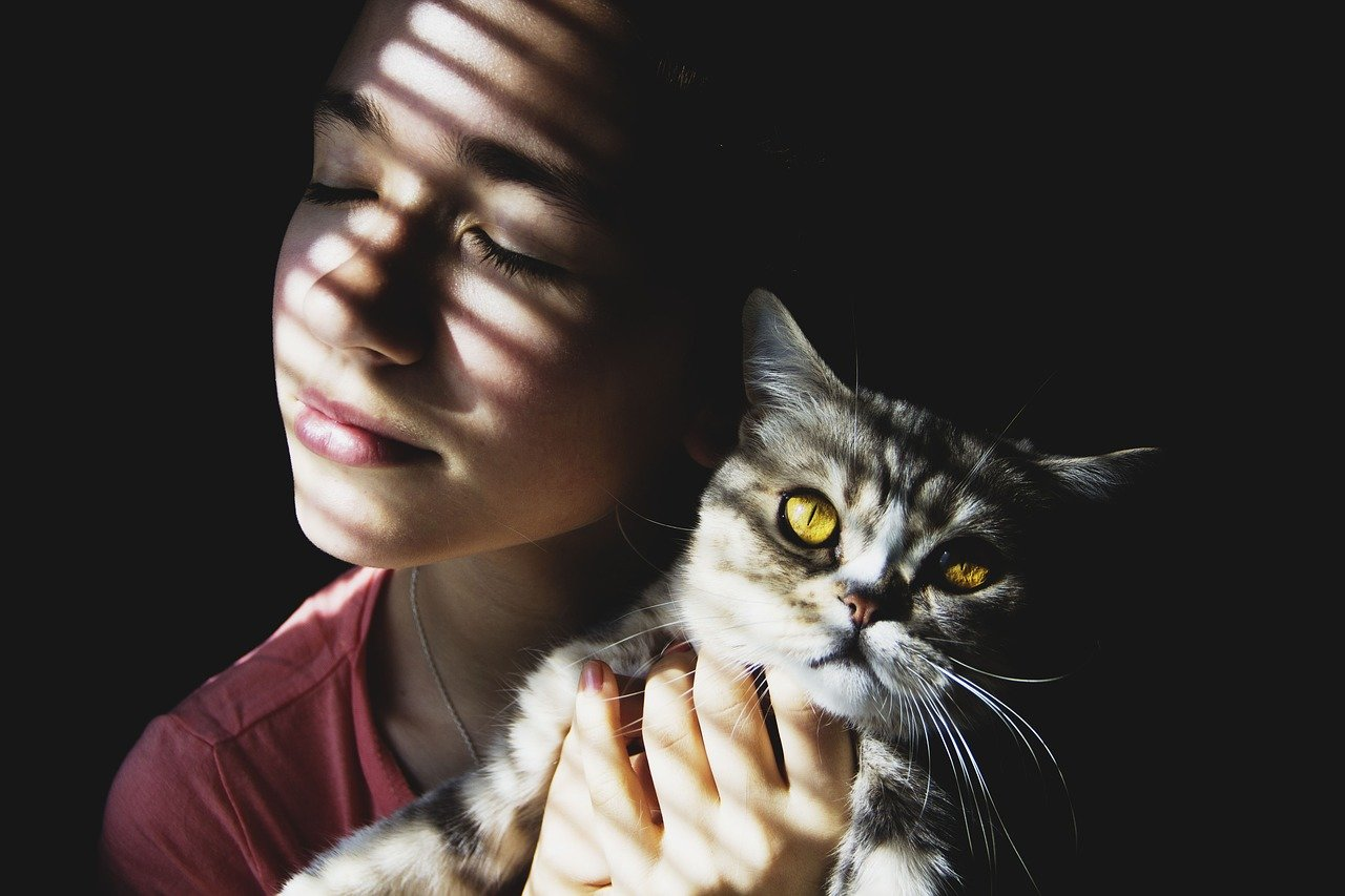10 pravidel jak se skamarádit s kočkou