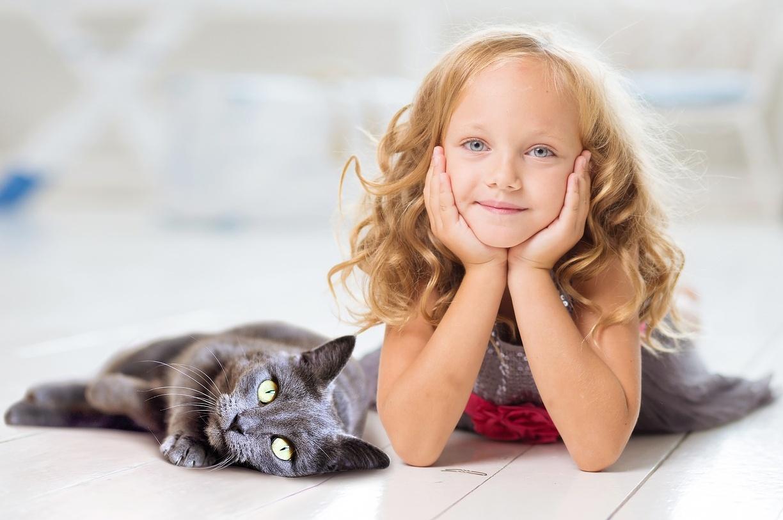 Máte alergii na kočičí chlupy? A víte, že nic takového neexistuje?