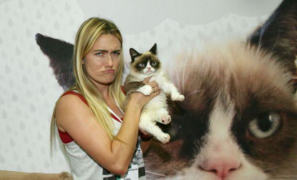 Tabatha-bundesen-grumpycat-proprietaire