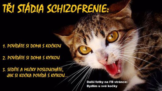 Stádia schizofrenie